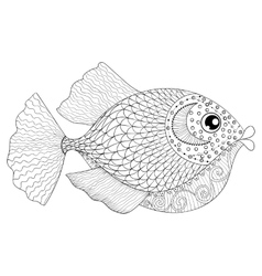 Hand drawn zentangle fish for adult anti stress vector