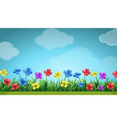 Scene with colorful flowers in the field vector