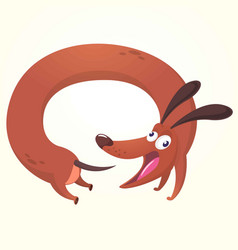 cartoon of cute purebred dachs vector image