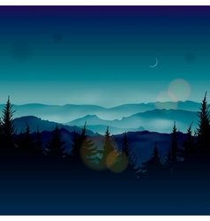 Misty coniferous forests vector image