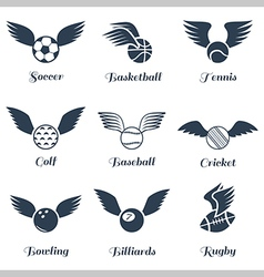 Sport balls with wings icon set vector