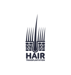 Hair follicle in hair bulb icon vector