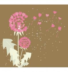 romantic dandelions vector image