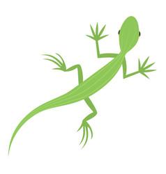 Salamander icon cartoon style vector