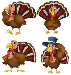Turkey set vector
