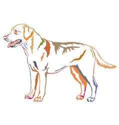 Colorful decorative standing portrait of labrador vector