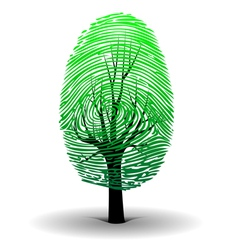 Fingerprint tree vector image
