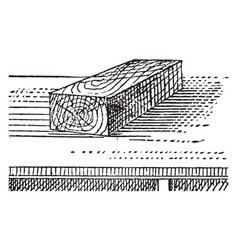 Block vintage vector