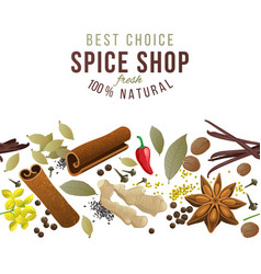 Seamless border with spices vector