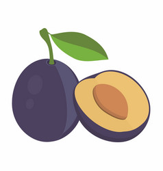 Plums with leaf vector