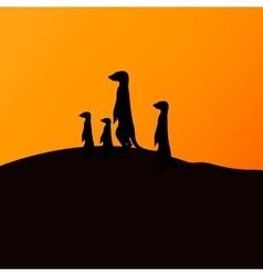 A group of meerkats vector