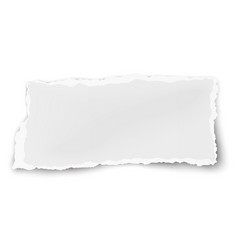 Oblong paper scrap isolated on white background vector