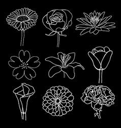 flower sketch design vector image
