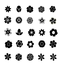 Floral on white background vector image vector image