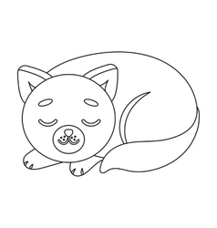 Sleeping cat icon in outline style isolated on vector