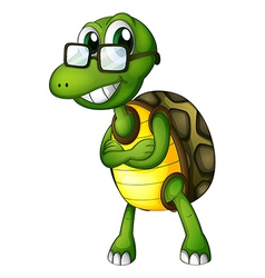 A turtle standing with an eyeglass vector