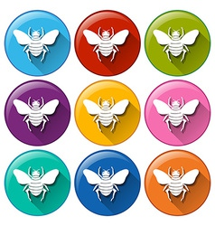 Circle buttons with insects vector