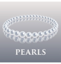 Pearls vector image