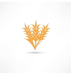 Ears of wheat barley or rye visual graphic icons vector