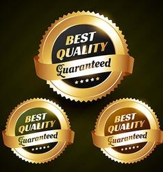 best quality beautiful golden label design vector image