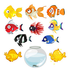 Set of colored tropical aquarium fish and bowl vector image vector image