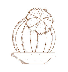 Abstract cute cactus vector