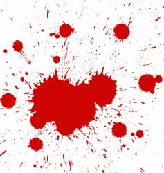 blood drops vector image vector image