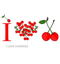 i love cherries vector image vector image
