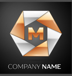 letter m logo symbol in the colorful hexagon on vector image vector image
