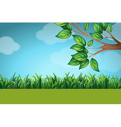 Scene with grass and tree vector