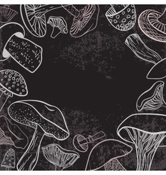 Background with different hand drawn mushrooms on vector image vector image