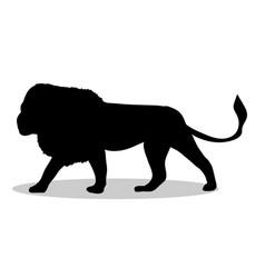 Lion predator black silhouette animal vector