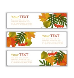 Advertising banners with autumn leaves vector
