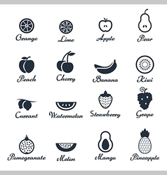 Icon set of fruits vector