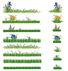 Green grass and flowers set vector