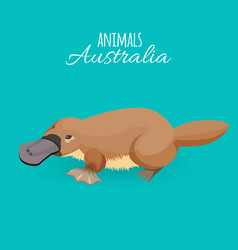 Australia animal brown crawling duckbilled vector