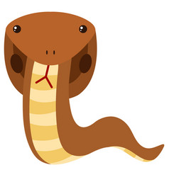 brown cobra on white background vector image vector image