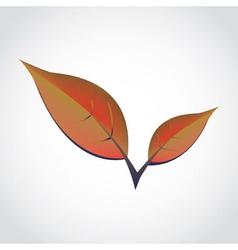 SpringLeafs vector image vector image