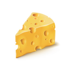 cheese piece with holes 3d realistic dairy vector image vector image