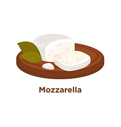 Tender mozzarella with laurel leaves on wooden vector