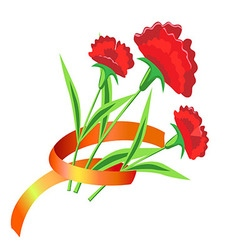 Three red flower with a ribbon Painted carnations vector image