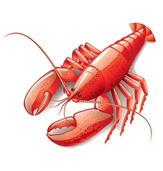 Object lobster vector