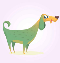 cartoon afghan hound vector image vector image