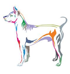 colorful decorative standing portrait of thai vector image