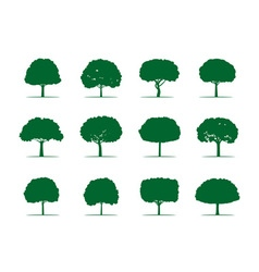 Collection of Green Trees vector image
