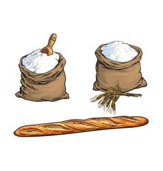 Sketch flour bag bread baguette set vector