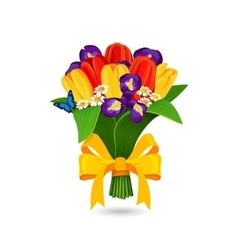 Bouquet of red yellow tulip and blue irises vector