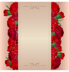 Background with red carnations vector image vector image