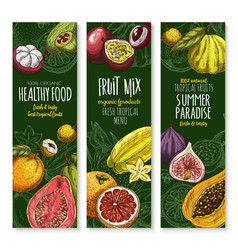 banners set for exotic fresh fruits menu vector image
