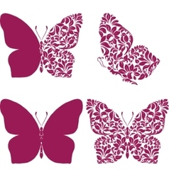 Butterfly set with patterned wing vector image
